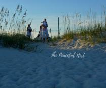 The Peaceful Nest(12)