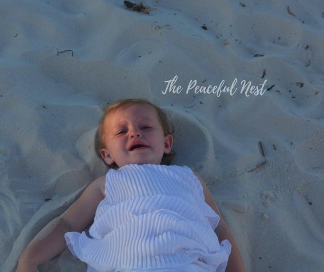 The Peaceful Nest(15)